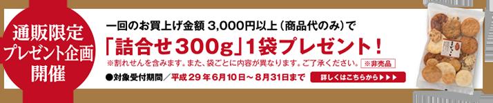 【通販限定企画】「詰合せ300g」プレゼントキャンペーンスタート!